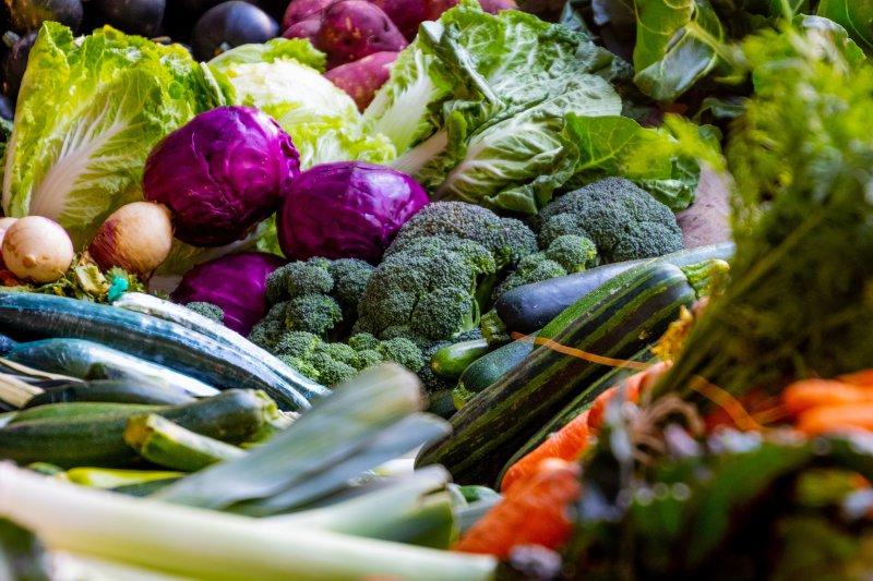 Dieta I Filozofia Wegetarianska Przepisy Wegetarianskie Na Vegespot Pl
